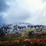 Does This Count As A Post?