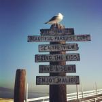 Enjoy Malibu
